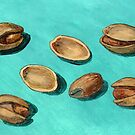 stash of pistachios by bernzweig