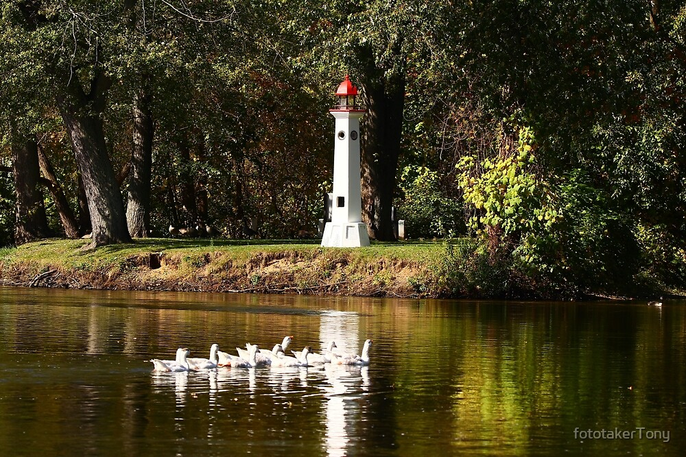 A Plump of Geese Past the Light Tower by fototakerTony
