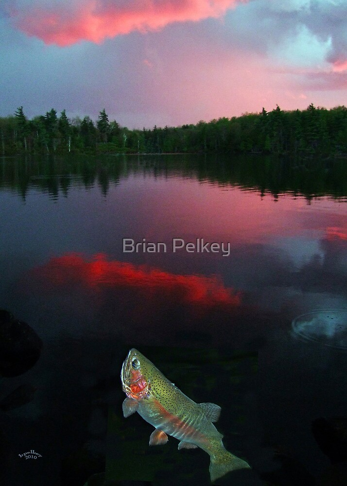 Pink Sky At Night by Brian Pelkey