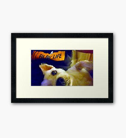 Fit for life  Framed Print