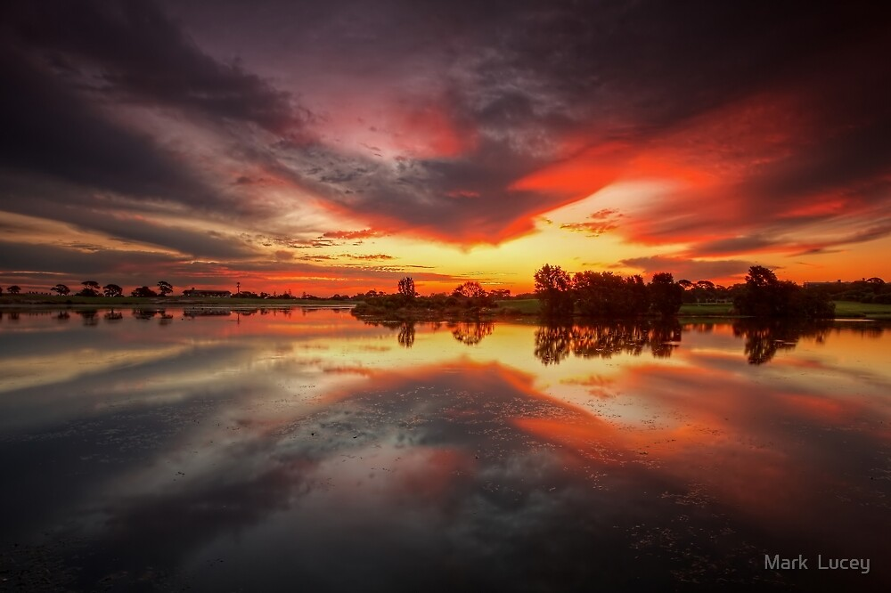 The Lake by Mark  Lucey