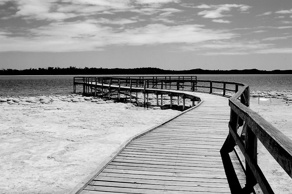 lake clifton by Naia