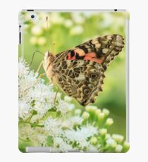 Painted Lady Butterfly iPad Case/Skin