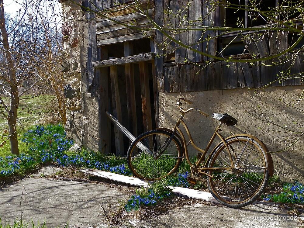 Flower Pedals by wiscbackroadz