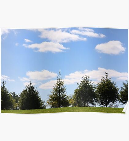 Picture Perfect Sky Poster