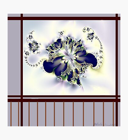 """""""Flower in the Window"""" Photographic Print"""
