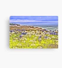 Flowers by the sea, Pescadero, CA Canvas Print