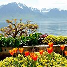 Springtime in Montreux - Switzerland by Arie Koene