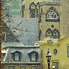 Spring Snow??? © by Dawn Becker