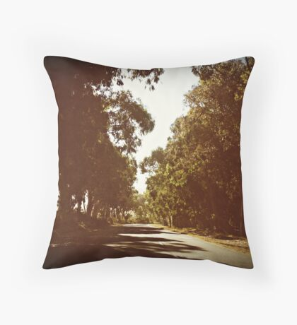 when the truth is, i miss you... Throw Pillow