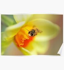 It Just Wouldn't Bee Spring Without ...  Poster