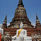 Budddhist Temple by snehit