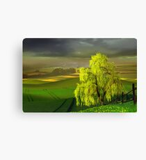 Green Beginning Canvas Print