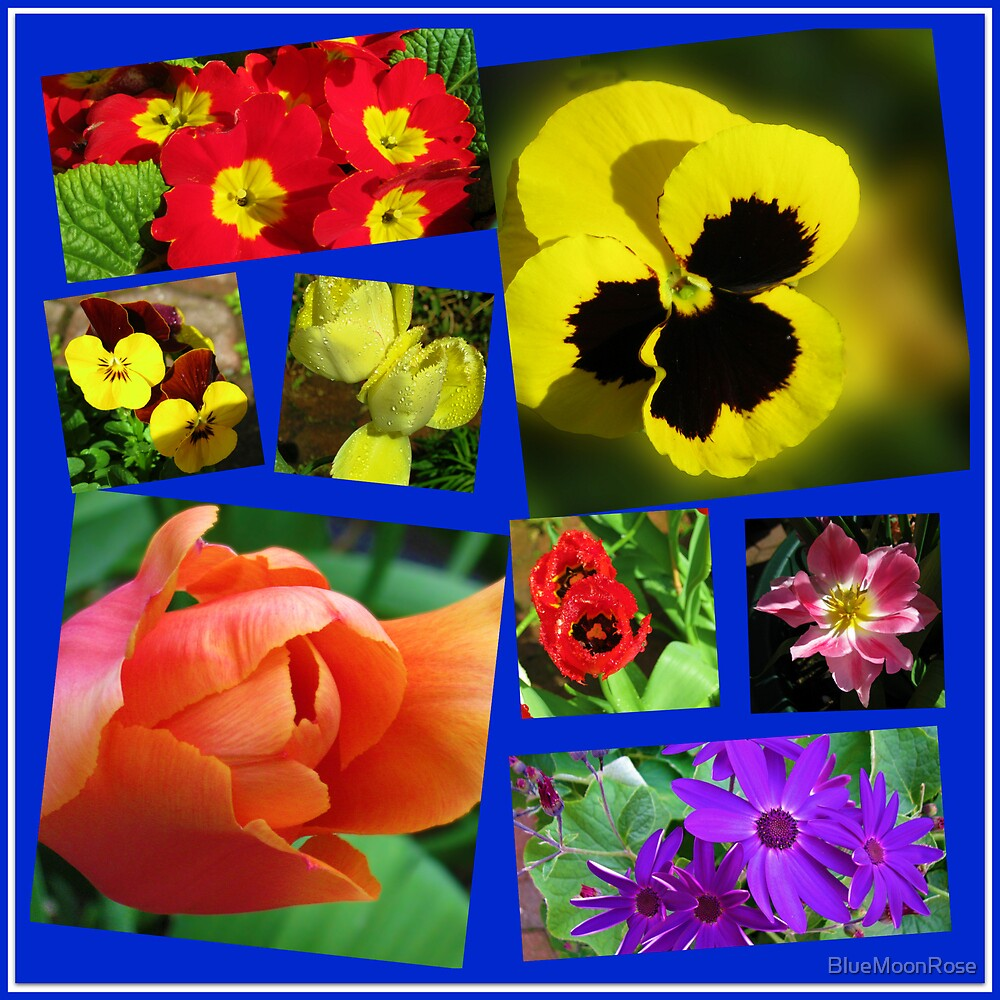 A Collage of Easter Flowers by BlueMoonRose