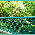 Bridge View by DALucas