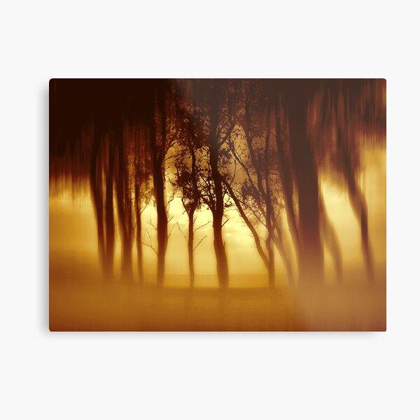 Morning Tree Silhouette(Sepia) Metal Print