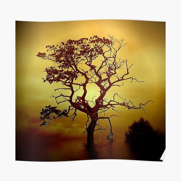 Evening Tree Poster