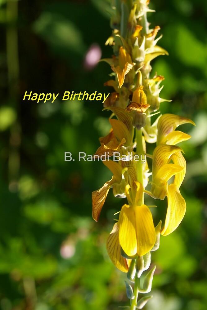 Snapdragon birthday greeting by ♥⊱ B. Randi Bailey