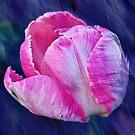 PinkTulip by RosiLorz