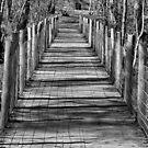 Wetland Bridge. by relayer51
