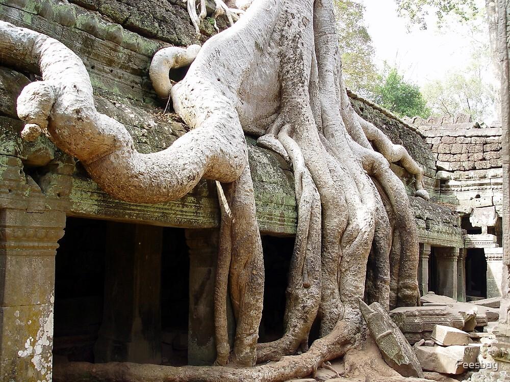 Cambodia. Angkor Wat , Siem Reap 51 by Feesbay