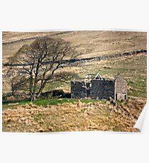 Dentdale Ruin - Cumbria Poster