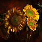 Sunflowers from the garden by EbyArts