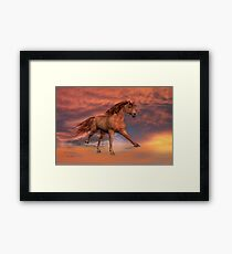 Freedom of Spirit Framed Print