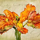 Fiery Floral  by Leslie Nicole