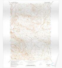 USGS Topo Map Oregon Virtue Flat 281975 1967 24000 Poster