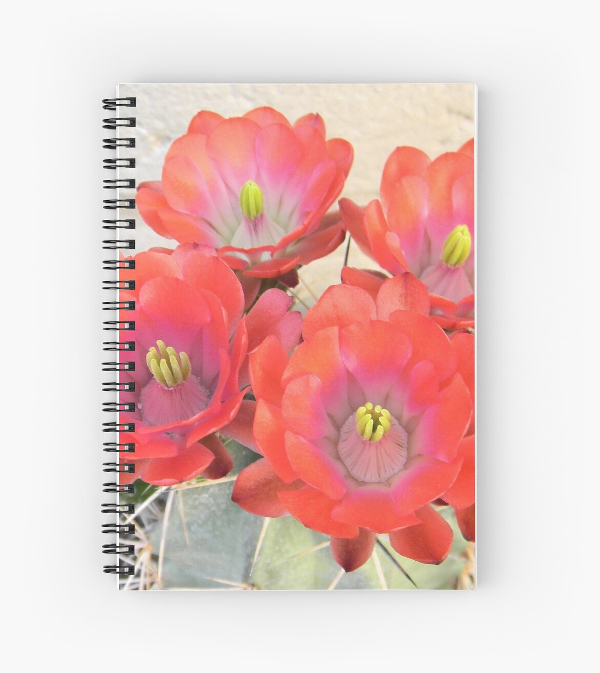Greeting Card Get Well Soon Cactus Flowers Spiral Notebooks By