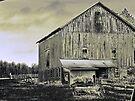 Big Ol' Barn by Marcia Rubin