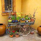 Flower Cart by Christine  Wilson