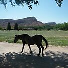 Georgia O'Keefe Ranch, Abiqui, New Mexico by lenspiro