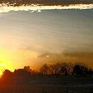 Morning Splendor by Barb Miller