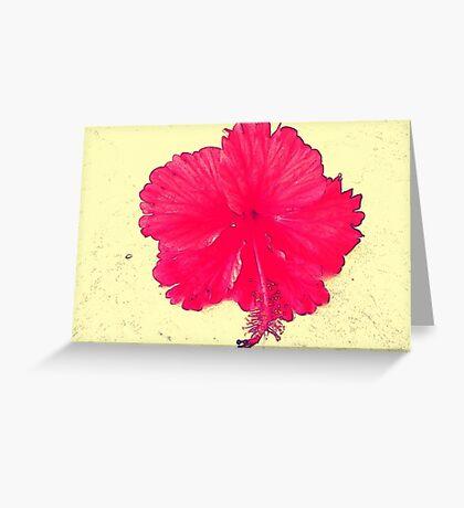 A Tropical Hi Greeting Card