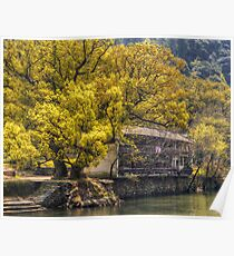 Tree by the River Poster