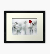 Just one red... Framed Print
