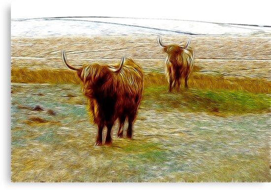 Hairy Beasties by Trevor Kersley