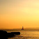 SEPIA SAILING by AndyReeve