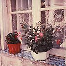 Red Pot White Pot by Rene Hales