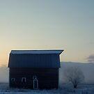 Frosty April Morning by Breanna Stewart