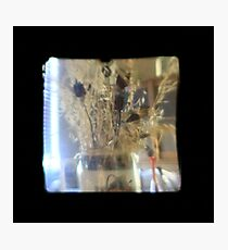 TTV Image ( Through The Viewfinder)#3 Photographic Print