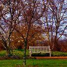 Enjoying the Spring by Monica M. Scanlan