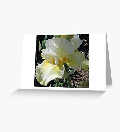 Melted Butter Iris Greeting Card