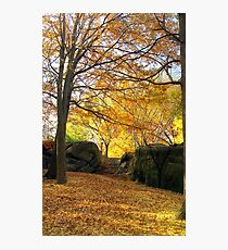 Fall on Stone Stairwell  Photographic Print