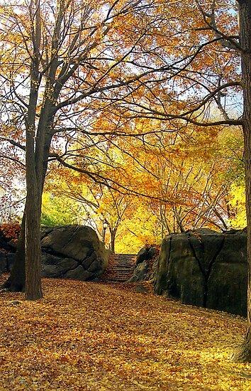Fall on Stone Stairwell  by Alberto  DeJesus