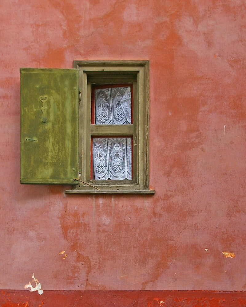 Lace Curtain by Tom  Reynen