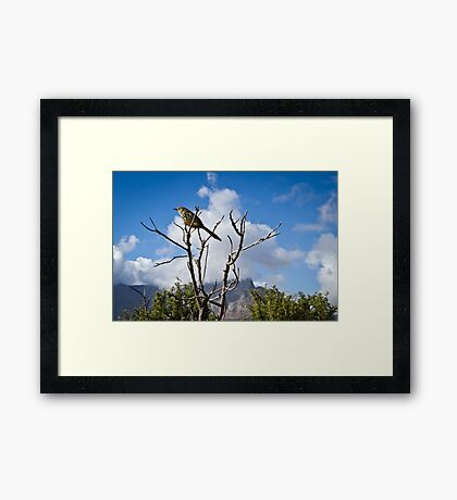 { in the clouds } Framed Print