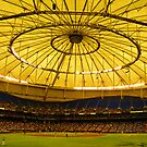 Game Day at The Trop by designerbecky